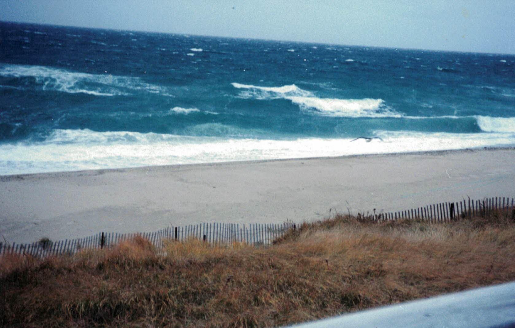 wavespic1 (2)
